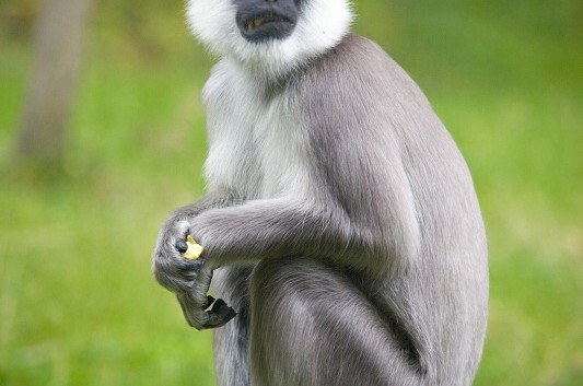 kurz fotografování zoo ostrava 14.9